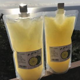へべす冷凍果汁 【1000ml×2パック】