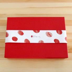 なつめいろ ギフトBOX なつめ色四角L|ギフト お祝い のし無料 のし なつめチップ なつめティー 結婚お祝い 出産祝い お誕生日 プレゼント 母の日 ご挨拶 プチギフト 手提げ袋付き 熨斗