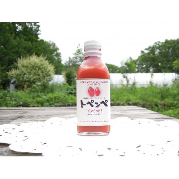 トペンペ 【アイコ赤】 200ml 1本バラ売り01