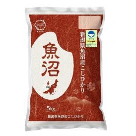 令和2年産 【特別栽培米】 魚沼産 コシヒカリ 5kg 精米