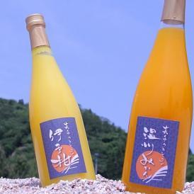 忽那諸島にある中島産の極上柑橘を使って作られた100%ストレートジュースのギフトセットです。