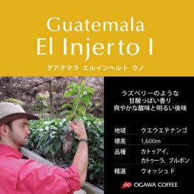 小川珈琲直営店のコーヒー グアテマラ エルインヘルト ウノ (豆)
