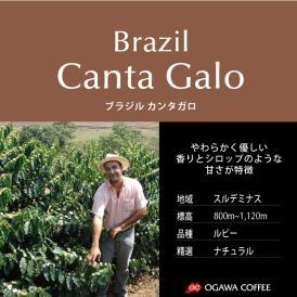 小川珈琲直営店のコーヒー ブラジル カンタガロ(粉)