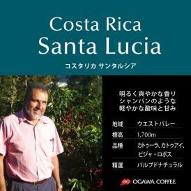 小川珈琲直営店のコーヒー コスタリカ サンタルシア(粉)
