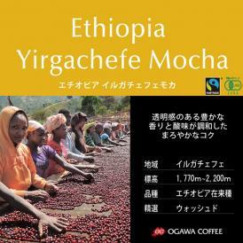 10%OFFセール! 小川珈琲直営店のコーヒー エチオピア イルガチェフェモカ(粉)