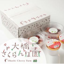 さくらんぼアイス&冷凍さくらんぼ