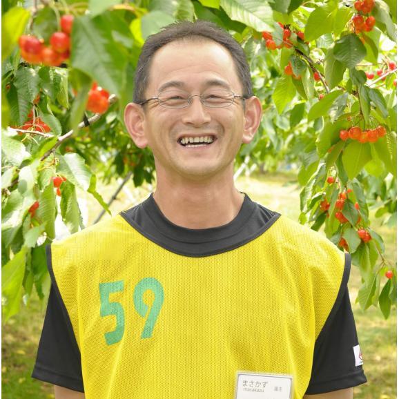黄色いさくらんぼ「月山錦スペシャル(48粒)」 7月下旬より発送開始※着日指定不可05