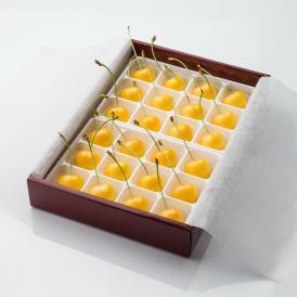 黄色いさくらんぼ「月山錦プレミアム(24粒)」 7月下旬より発送開始 がっさんにしき