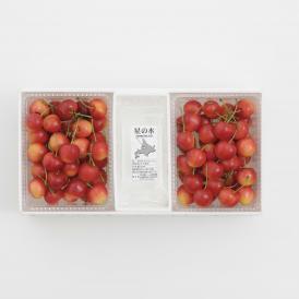 さくらんぼ南陽1kg   バラ詰め 限定50個販売 (7月下旬頃~8月中旬頃発送商品)