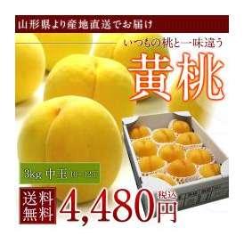 【山形県産】黄桃 3kg 中玉10〜12玉