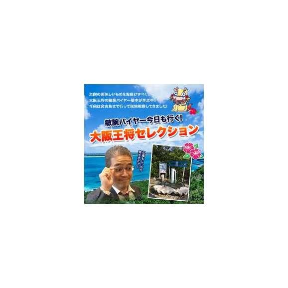 【大阪王将】雪塩セット【送料無料】(餃子・唐揚げ・焼売・春巻き・雪塩)02