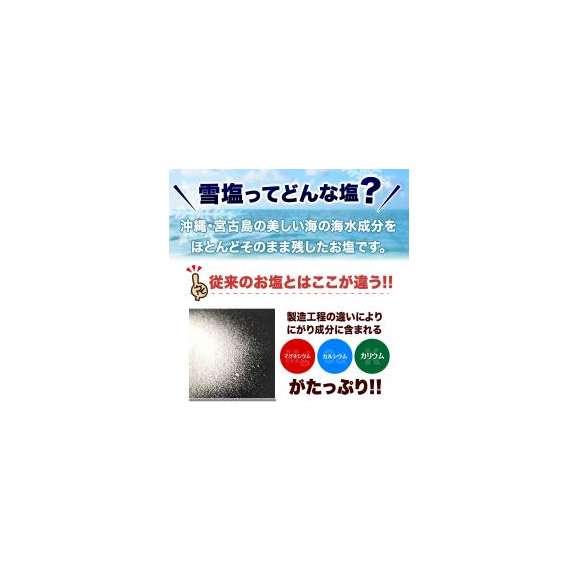 【大阪王将】雪塩セット【送料無料】(餃子・唐揚げ・焼売・春巻き・雪塩)03