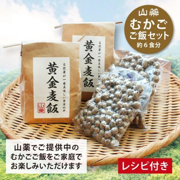 【箱根自然薯の森 山薬】自然薯むかごご飯セット01