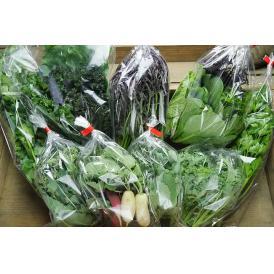 季節の野菜セット【SMALL】季節のお野菜5品目の詰め合わせ(1名様分)
