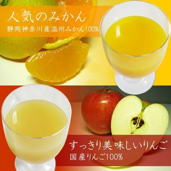 フルーツジュース ギフト 果汁100パーセント 1L×2本詰め合わせ みかんオレンジジュースりんごリンゴアップルジュース05