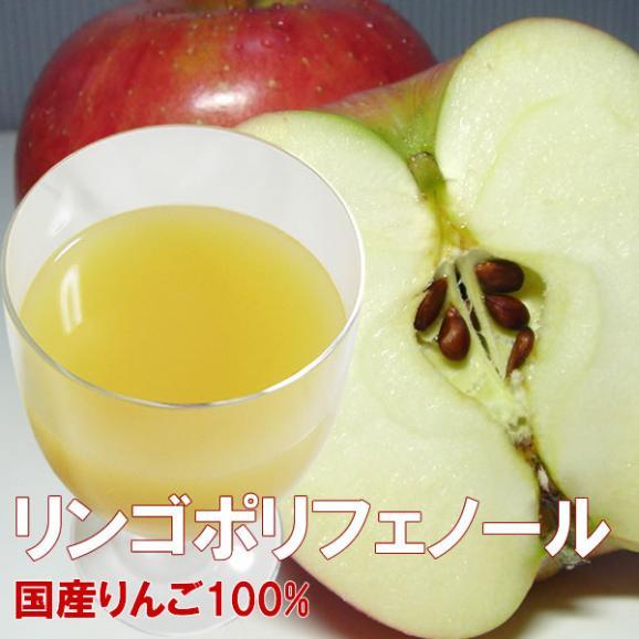 フルーツ ストレート ジュース ギフト 内祝 1L×2本詰め合わせ りんごアップルジュース05