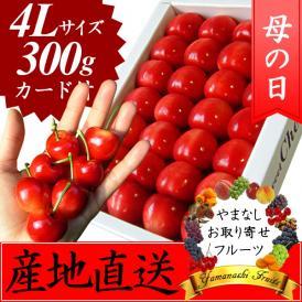 母の日 プレゼント フルーツ さくらんぼ 大玉 4L 300g ※お届け予定:5/10-25日頃