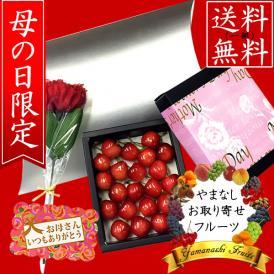 母の日 プレゼント フルーツ さくらんぼ 銀ケース入り カード・造花付き 一部送料無料