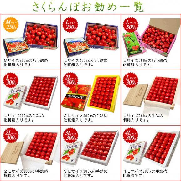 母の日 プレゼント フルーツ さくらんぼ 佐藤錦・高砂 L 250g02