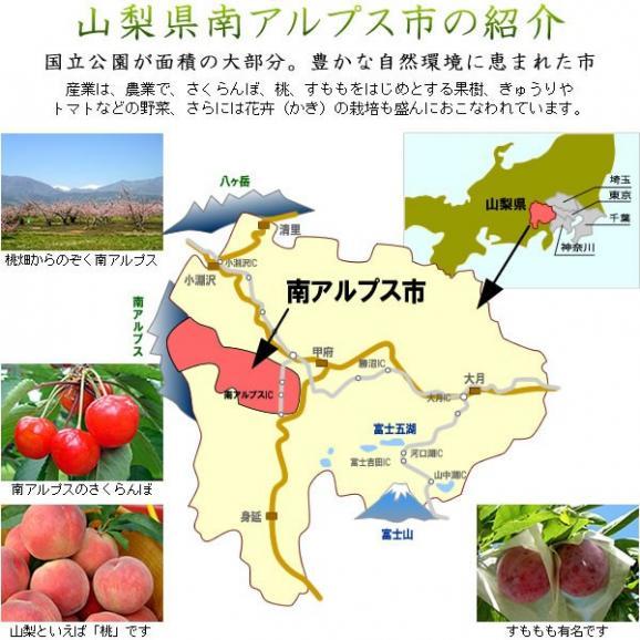 母の日 プレゼント フルーツ さくらんぼ 佐藤錦・高砂 L 250g06