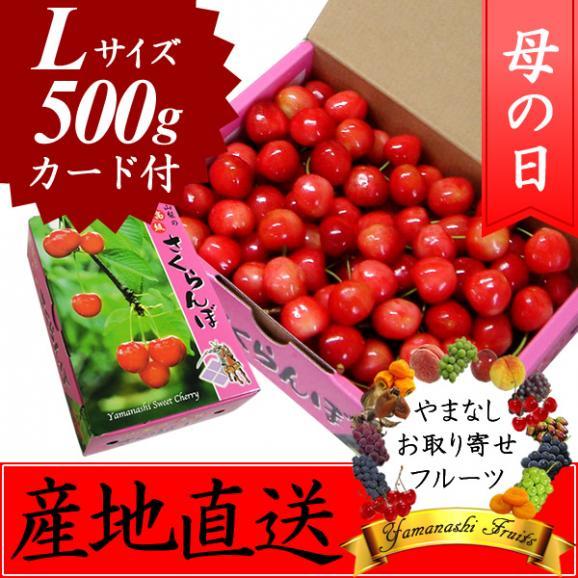 母の日 プレゼント フルーツ さくらんぼ 佐藤錦・高砂 L 500g01