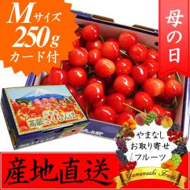 母の日 プレゼント フルーツ さくらんぼ 佐藤錦・高砂 M 250g