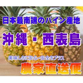 桃に似た香りがするピーチパインを、是非ご賞味ください!!