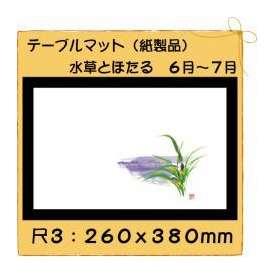 テーブルマット 尺3 水草とほたる No.314 100枚