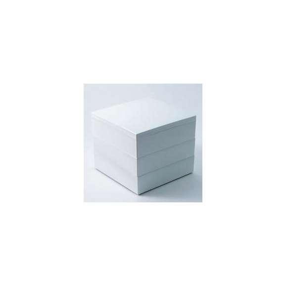 【メーカー直送】Party Box パーティーボックス 180 WH【お弁当箱/遠足/ピクニック/シンプル/カラフル/お花見】01
