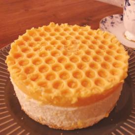 純粋蜂蜜レアチーズケーキ★ 純粋蜂蜜付き HONEY CHEESE CAKE