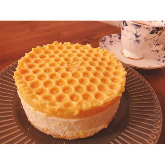 純粋蜂蜜レアチーズケーキ★ 純粋蜂蜜付き HONEY CHEESE CAKE02