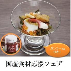 アワビ フカヒレ いくら の入った豪華海鮮漬け300g ガンラー5g付き【冷凍】