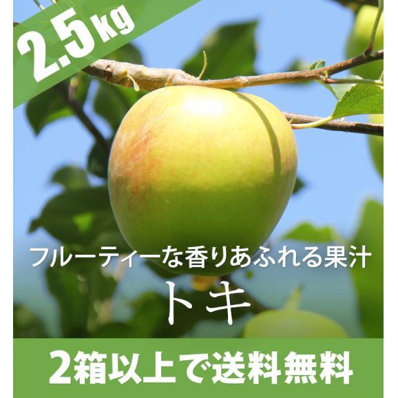 フルーティーな香りとあふれる果汁が魅力 トキ2.5kg02