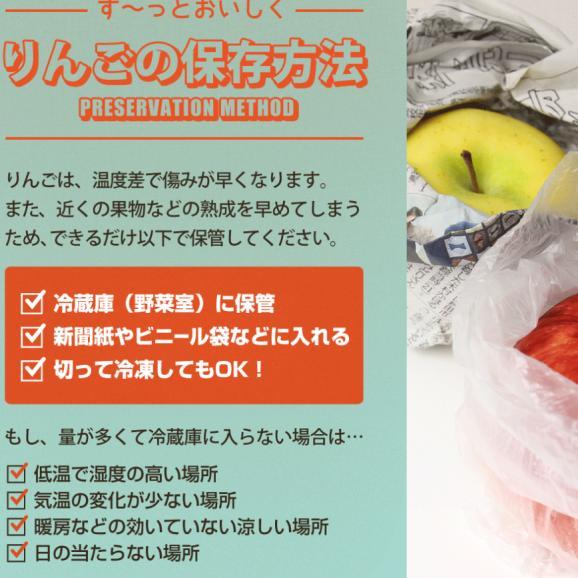 通常品りんご 葉とらずふじ・シナノゴールド2種詰め合わせ 9kg(26~40個)03