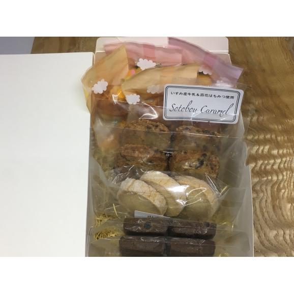 【送料無料】おすすめお菓子10個入りお試しBOX02
