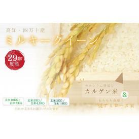 新米【平成29年産】  高知 四万十産  ミルキークイーン (玄米10kg/白米9kg)