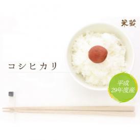 【平成29年産】徳島県産  コシヒカリ 10kg