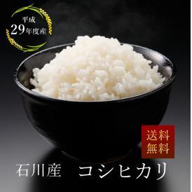 【29年産】石川産 こしひかり 玄米10kg/白米9㎏ 【北海道・沖縄を除き送料無料】