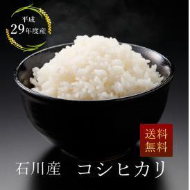 【29年産】石川産 こしひかり 玄米20kg/白米18㎏(9kg×2)【北海道・沖縄を除き送料無料】