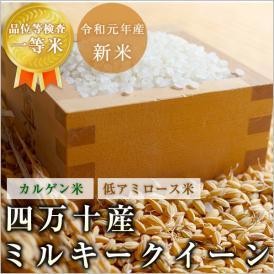 ミルキークイーン 高知 四万十産 令和元年産 玄米10kg/白米9kg 北海道・沖縄を除き送料無料