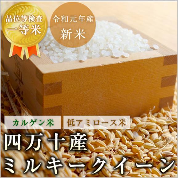 ミルキークイーン 高知 四万十産 令和元年産 玄米10kg/白米9kg 北海道・沖縄を除き送料無料01