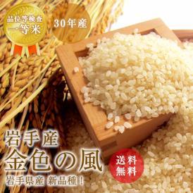 30年産 岩手産 金色の風 玄米5kg / 白米5kg  北海道・沖縄を除き送料無料