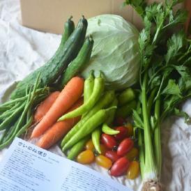 農薬・化学肥料不使用、農家直送、鮮度抜群、食味最高、こだわりの野菜のセットです。