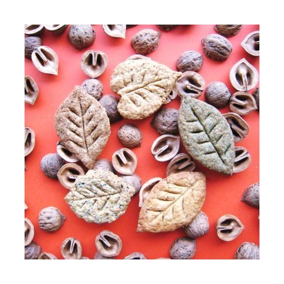 【送料込ギフトBOX入り数量限定】風の森のクッキーhitoha5種×2 10枚セット       01