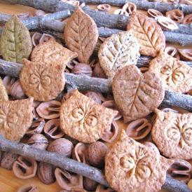 風の森のクッキーhitoha Zuku 7枚ギフトセット