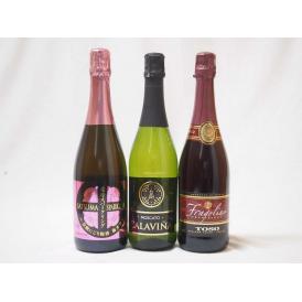甘口スパークリングワイン飲み比べ3本セット(イタリア、スペイン、日本鹿児島県)泡ワイン3本セット