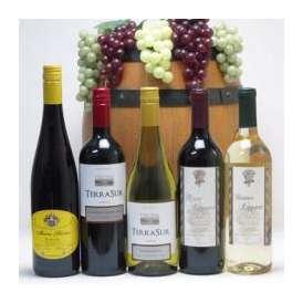 セレクションドイツ×セレクションチリワイン5本セット(赤3本、白2本)で750ml×5本