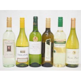 金賞受賞酒の入ったセレクション白ワイン6本セット(白6本)750ml×6本