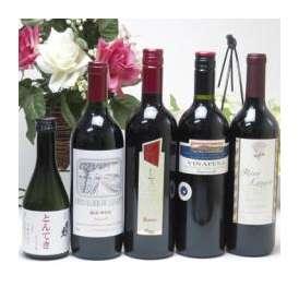 肉に合うセレクション赤ワイン750ml×4本&日本酒とんてきに合うお酒300mlセット