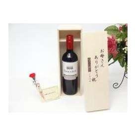 母の日 ギフトセット ワインセット お母さんありがとう木箱セット(テラ・スル(カベルネ) 赤(チリ)750ml)母の日カード お母さんありがとうカーネ